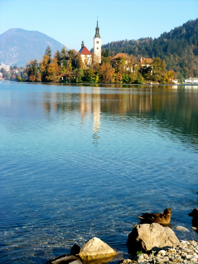 The island in the lake with a baroque church.