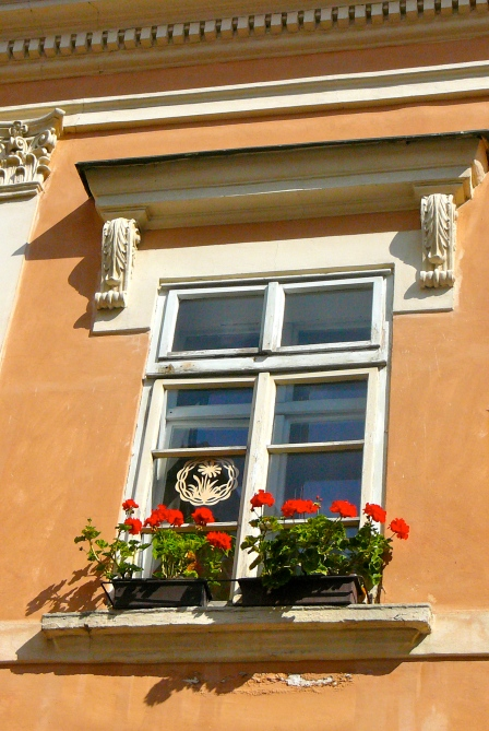 I have a weakness for taking photos of cute window boxes:)