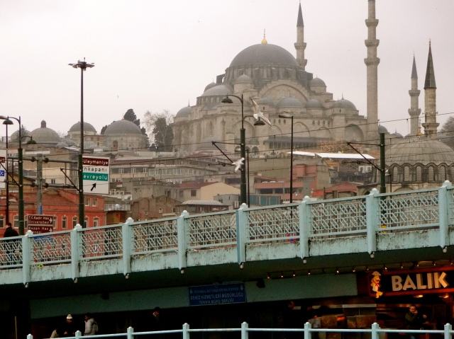 Istanbul, where my grandmother had hoped to be sent after her escape from Soviet Russia.  Ironically, it is one of my favorite countries...I've been there six times!