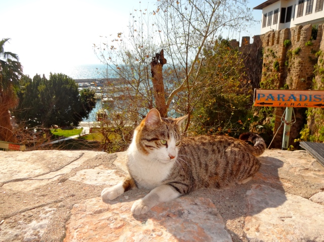 Enjoying a sunny February day in the old city of Kaleici in Antalya, Turkey
