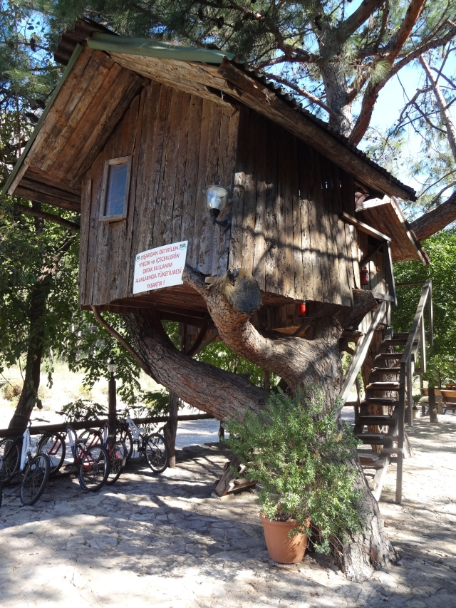 Turkmen's Tree Houses
